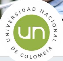 Agencia de Noticias UN
